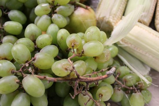 rotten grapes