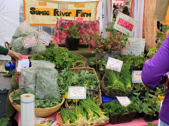 sumas river farm bellingham farmers market