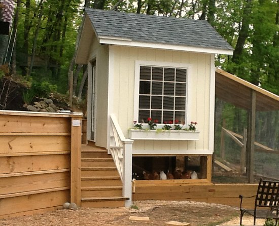 Classic chicken coop plans DIY