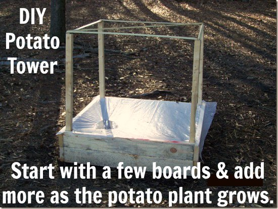 DIY Potato Tower