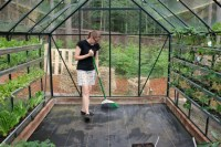 Growing Vegetables in a Greenhouse - One Hundred Dollars a ...
