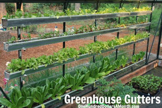 greenhouse gutters gardening