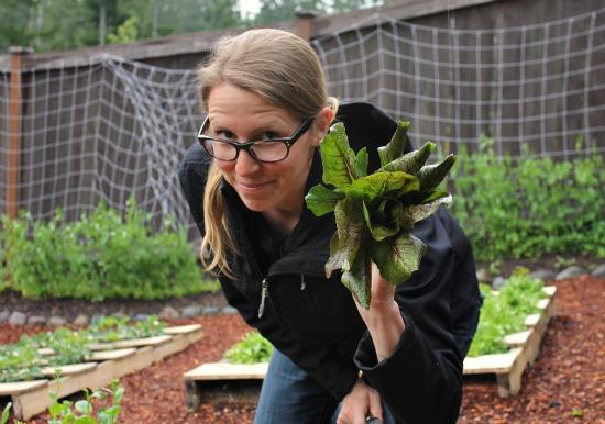 mavis butterfield pallet gardening