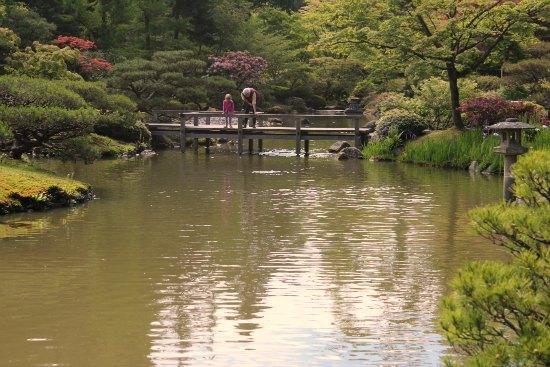 Japanese Tea Garden  Seattle