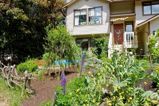 food not lawns front yard garden