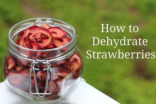 how-to-dehydrate-strawberries