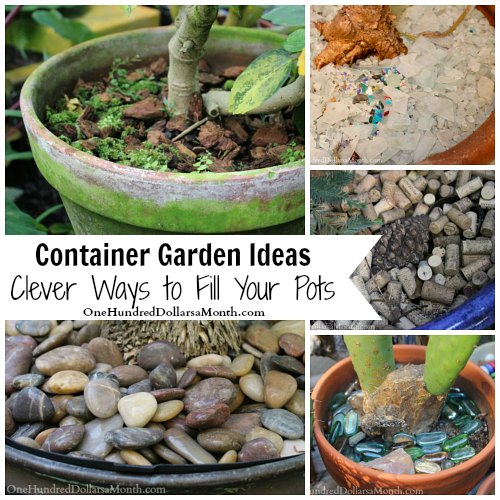 Container Garden Ideas - Clever Ways to Fill Your Pots