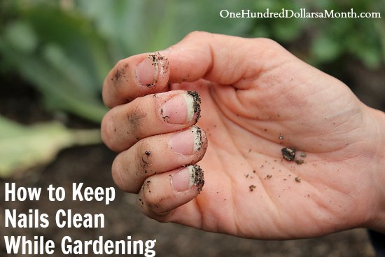 How To Keep Nails Clean While Gardening