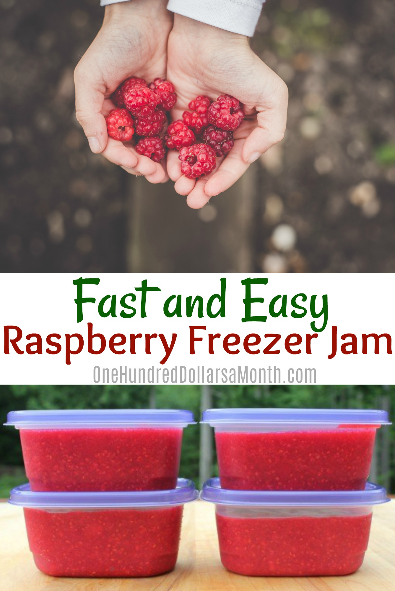 Fast and Easy Raspberry Freezer Jam e Hundred Dollars a Month