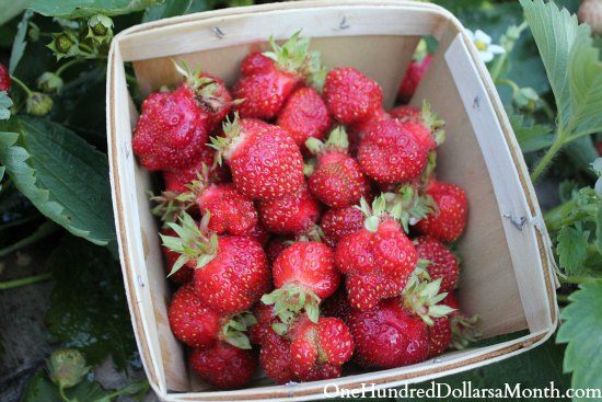 strawberries in wooden basket