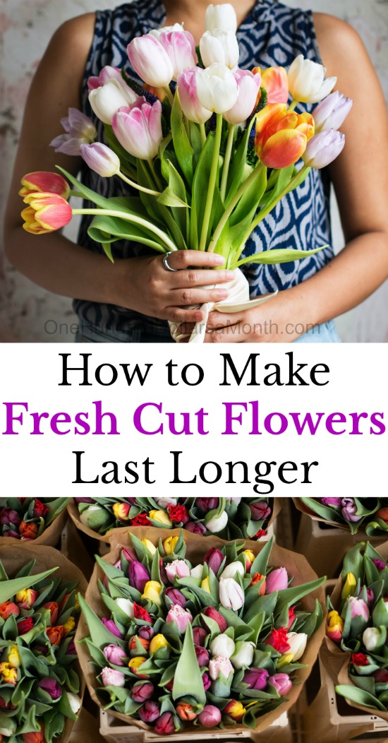10 Tips to Make Fresh Cut Flowers Last Longer - One Hundred Dollars ...