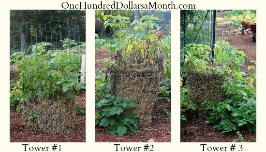 potato towers