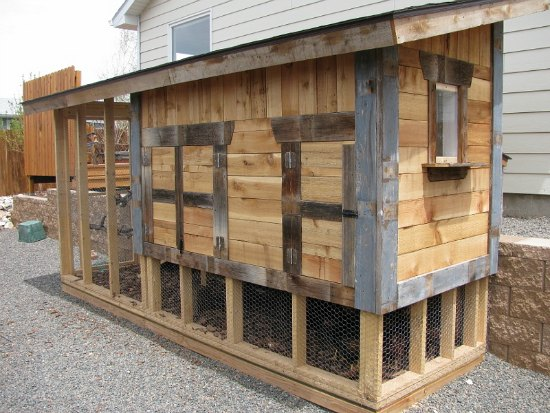 cool-chicken-coop-designs