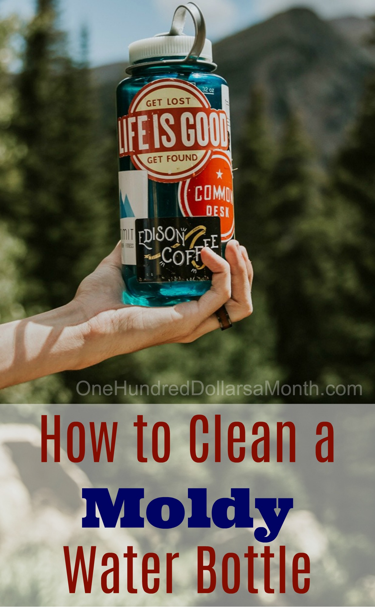 How to Clean a Moldy Water Bottle - One Hundred Dollars a Month