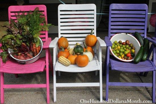 mavis garden blog one hundred dollars a month