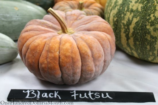 national heirloom exposition black tutsu