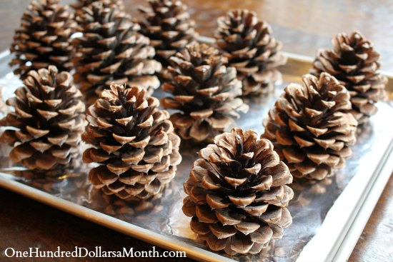 house of pinecones how to make scented pine cones one hundred dollars a month
