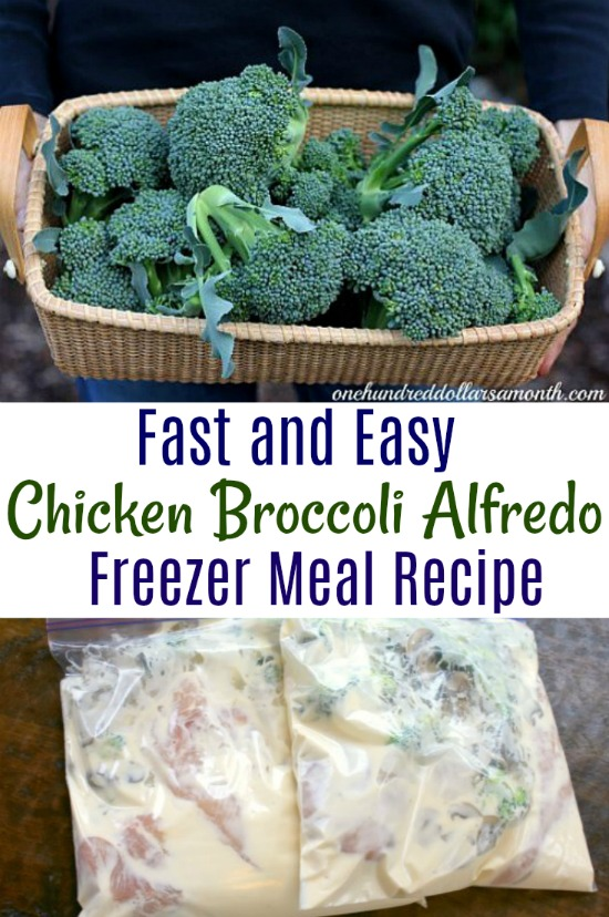 Freezer Meals Chicken Broccoli Alfredo One Hundred Dollars A Month