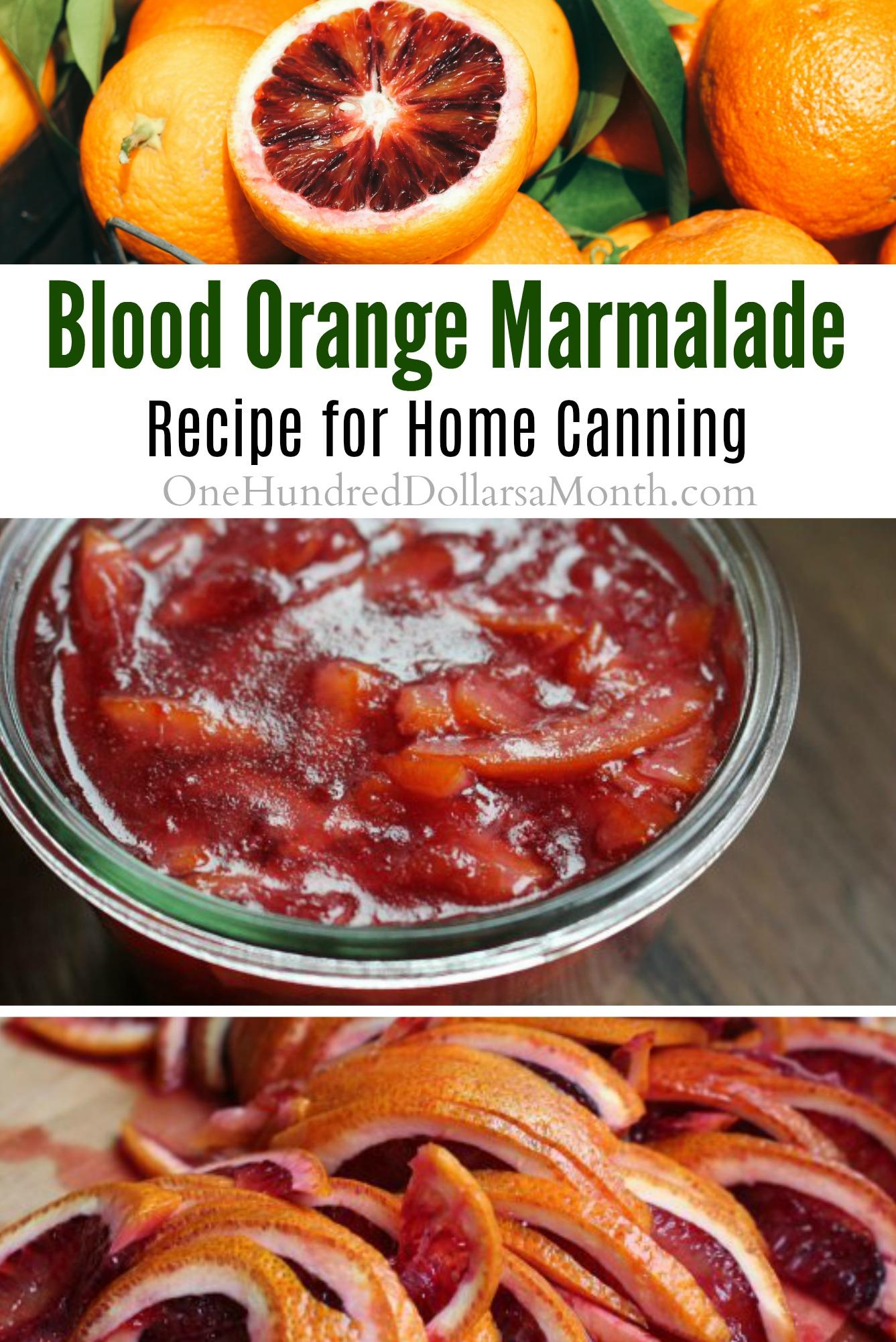 Blood Orange Marmalade - One Hundred Dollars a Month