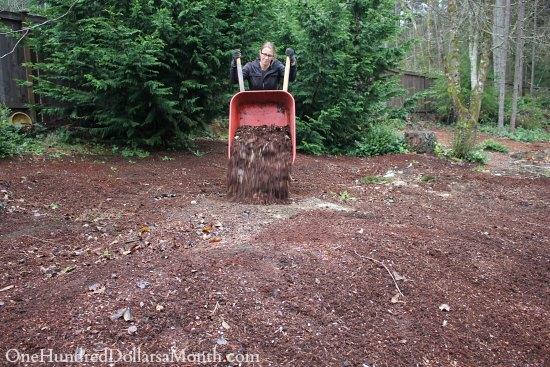 red wheelbarow