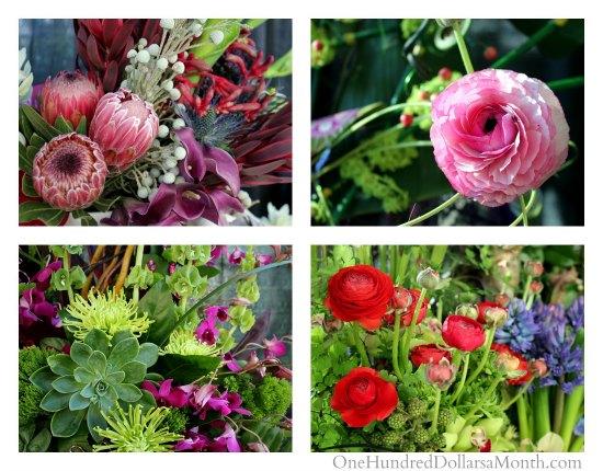 Garden inspiration from the northwest flower and garden - Northwest flower and garden show ...