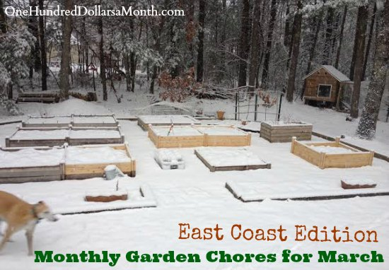 Monthly Garden Chores for March – East Coast Edition
