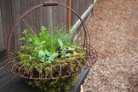 diy-herb-basket