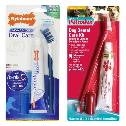 dog toothbrush kit
