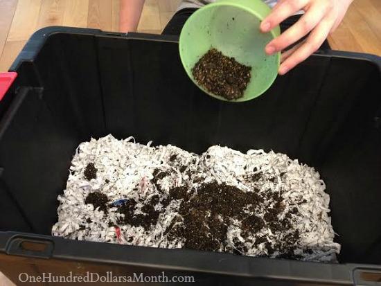making a worm bin