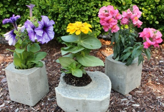 cool-planters-made-from-concrete-