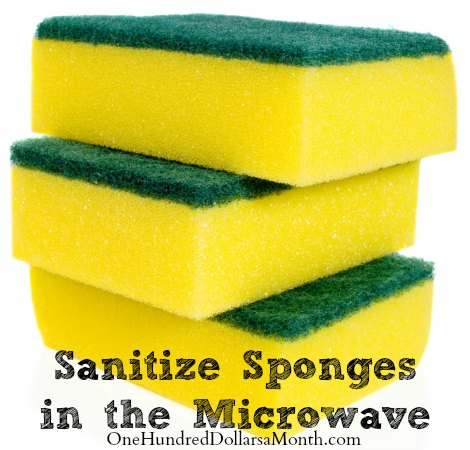 Sanitize-Sponges-in-the-Microwave
