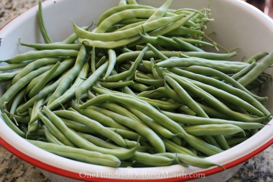 How To Freeze Green Beans For Winter Storage One Hundred Dollars