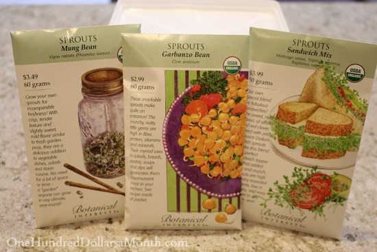 Indoor Gardening - Seeds to Sprouts