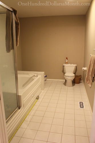 My Master Bathroom Remodel I Need Suggestions One Hundred - Should i remodel my bathroom