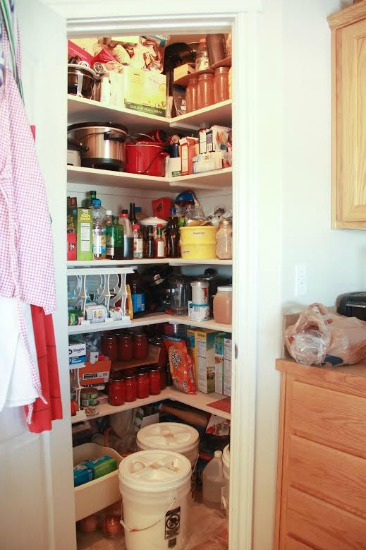 Stephanie Pantry Pictures 1