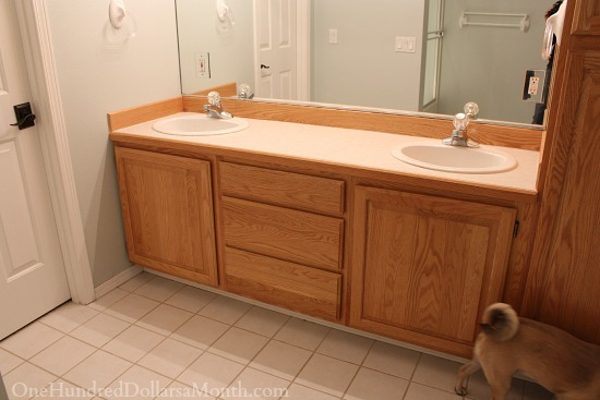 Jack and Jill Bathroom Remodel Part 1 - One Hundred Dollars ...