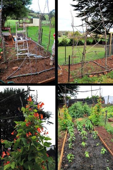 Lisa garden 7
