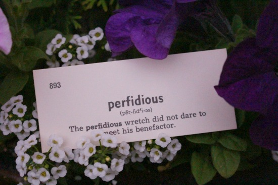 perfidious