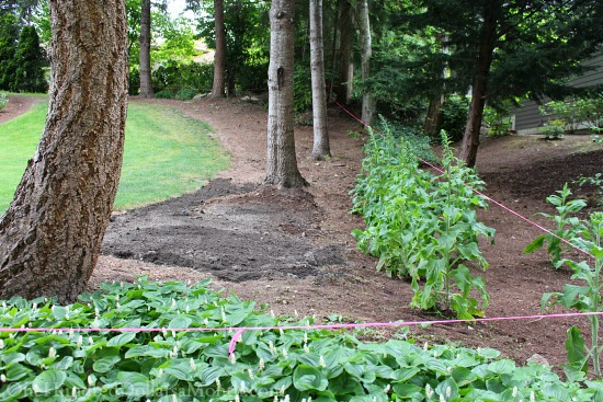weeded garden