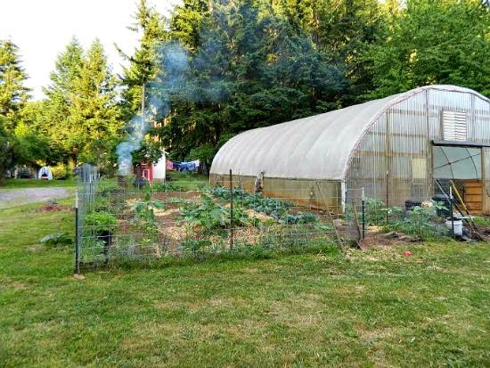 Abigail farm pictures3