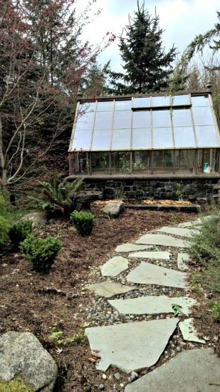 Saras garden pics5