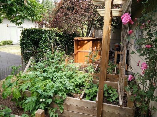 square foot garden
