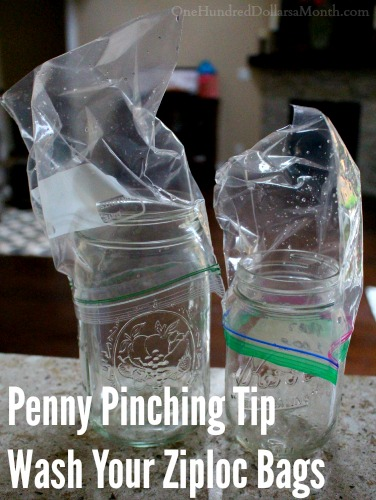 Penny Pinching Tip - Wash Your Ziploc Bags