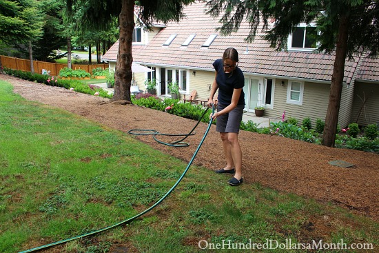 Use a Garden Hose to Outline a Flower Bed