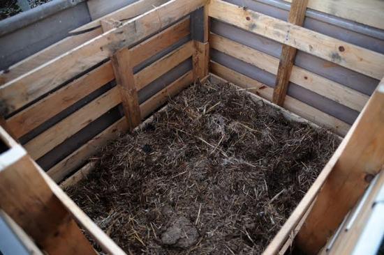 composting11