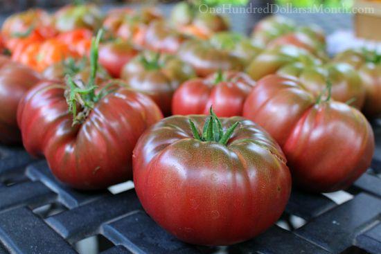 heirloom purple cherokee tomatoes