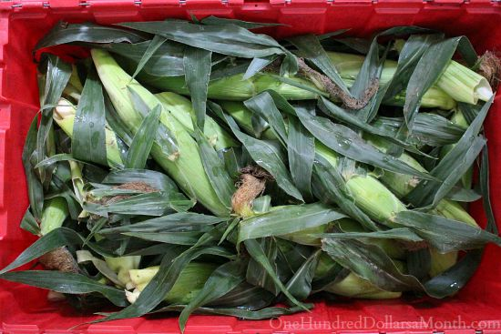 case of corn
