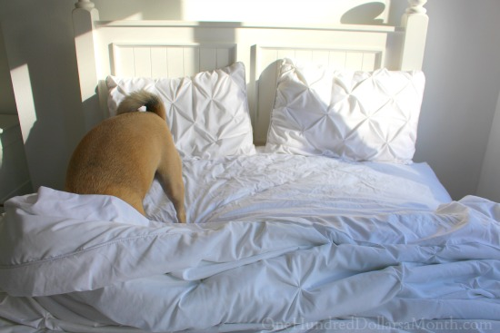 lucy puggle white bedding