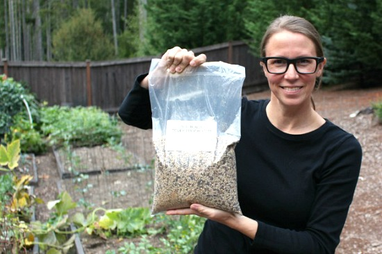 good-seeds-for-cover-crops