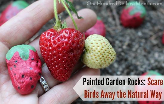 Painted Garden Rocks Scare Birds Away the Natural Way